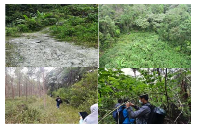 Survey Lapangan Pengembangan Lahan Food Estate di Kabupaten Humbang Hasundutan
